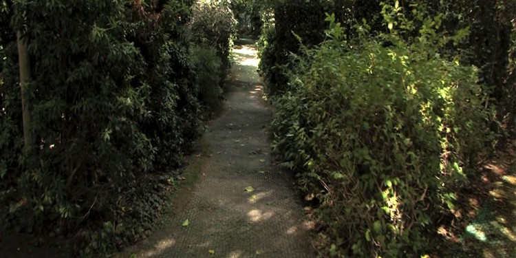 SAQUEL-Jardin_1