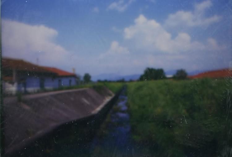img295-meoni
