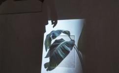 5_ Lee Kit, Linger on, your lit-up shade, Casa Masaccio Centro per l'Arte Contemporanea. Veduta della mostra. Foto OKNOstudio.