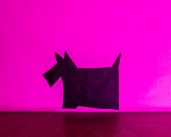 2_Cinzia Ruggeri, Scherzi, n.d., black velvet pouf, 55 x 90 x 100 cm, ph OKNOstudio